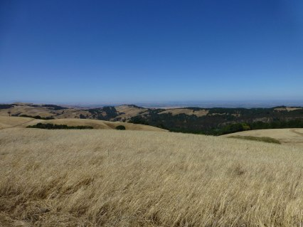 little bit more of the northa bay area