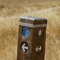 2013 Trails Challenge Band - Kestrel Loop